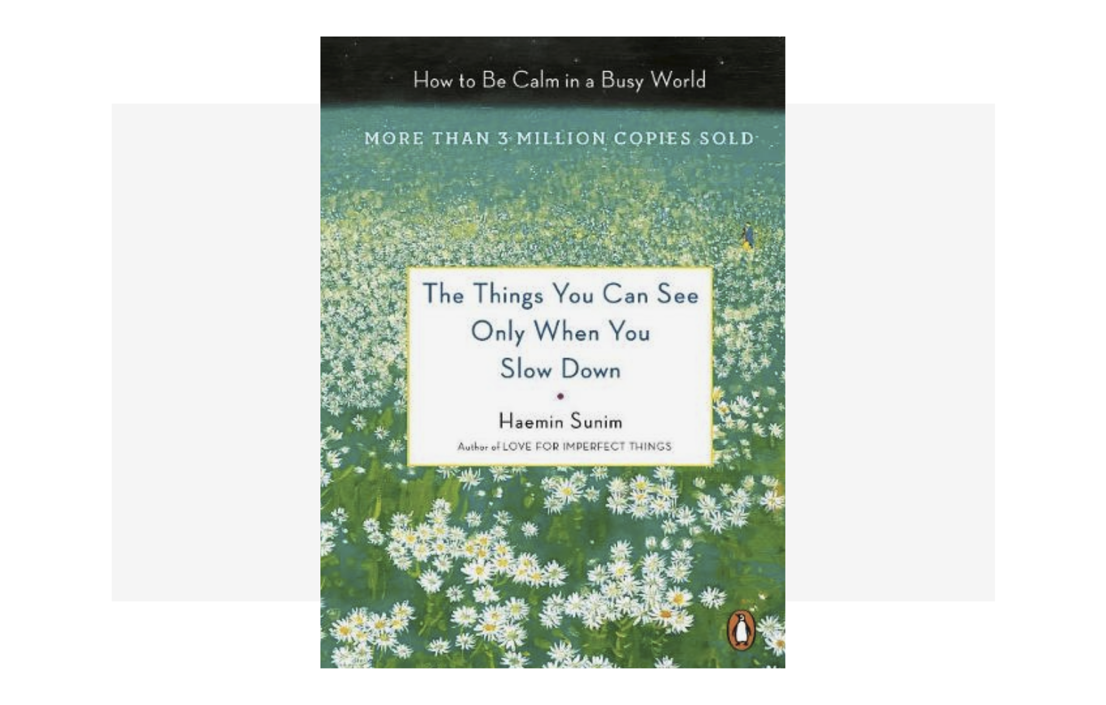 The Things You Can See by HAEMIN SUNIM