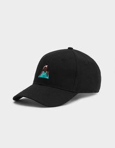 C S Wl Me Rollin Curved Cap Onesize Black