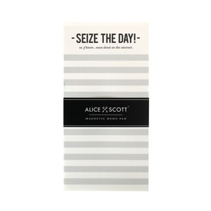 Alice Scott Seize The Day Or Y'Now Mess About on The Internet Writing Pad