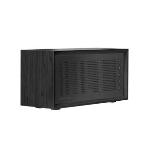 Promate Stereo Speaker And Fm Radio Black