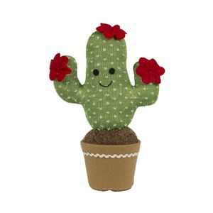Happy Cactus Decoration
