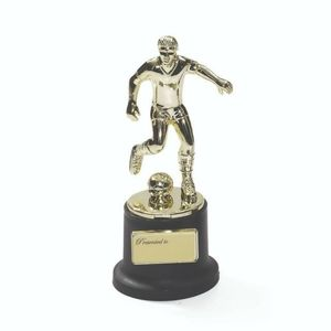 Small Trophy Soccer