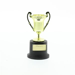 Small Trophy Loving Cup