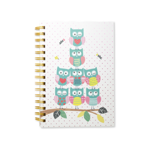 Twooly Fabulous A5 Notebook Owl Pyramid