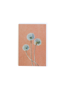 Kraft Garden Card Blue 1