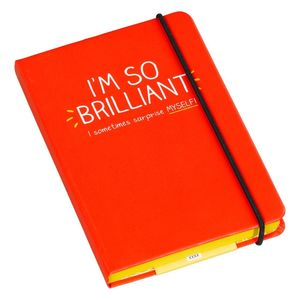A6 notebooks i m so brilliant